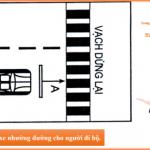 Bài thi sát hạch thực hành lái xe số 2